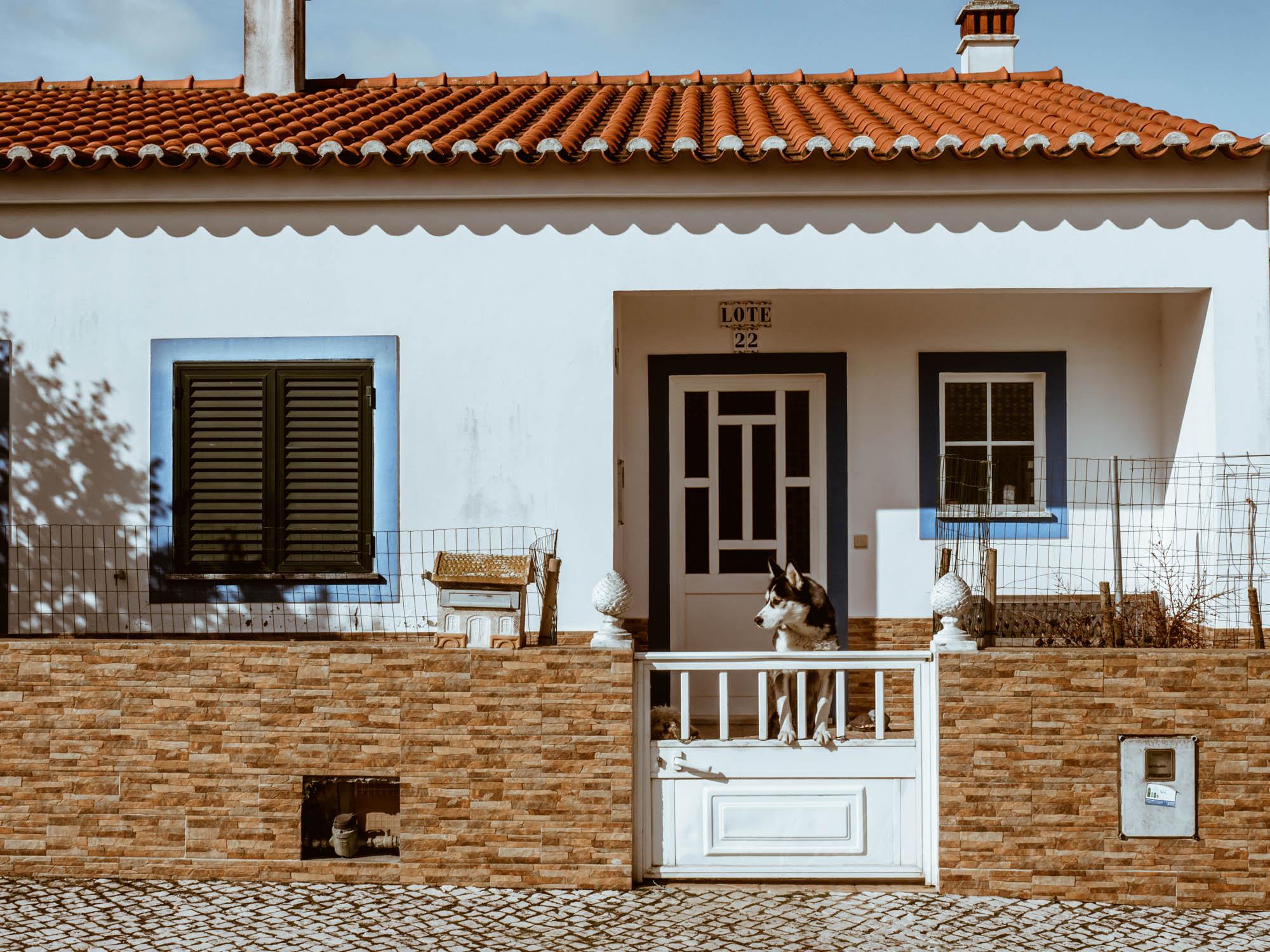 Algarve-kallisteha-14