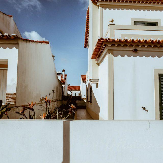 Algarve-kallisteha-17