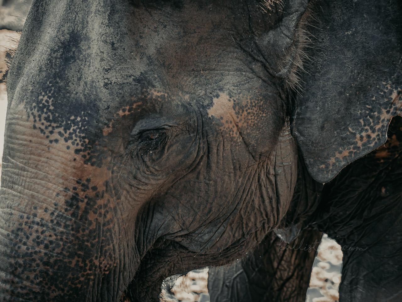Une Thailande authentique - Kallisteha, blog voyage - IG @nouveaux_regards